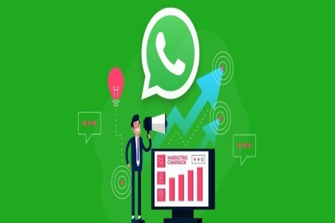Get Ideas From Successful WhatsApp Marketing for WhatsApp For Business