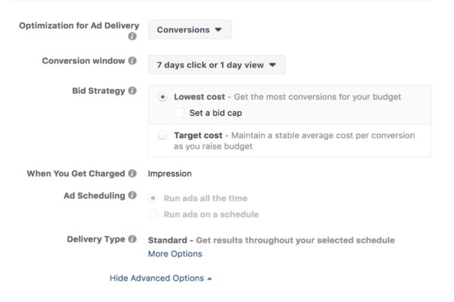 Ad Bid Facebook Advertising Cost