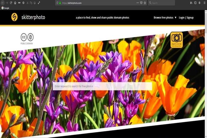 SkitterPhoto Stock Photo Sites