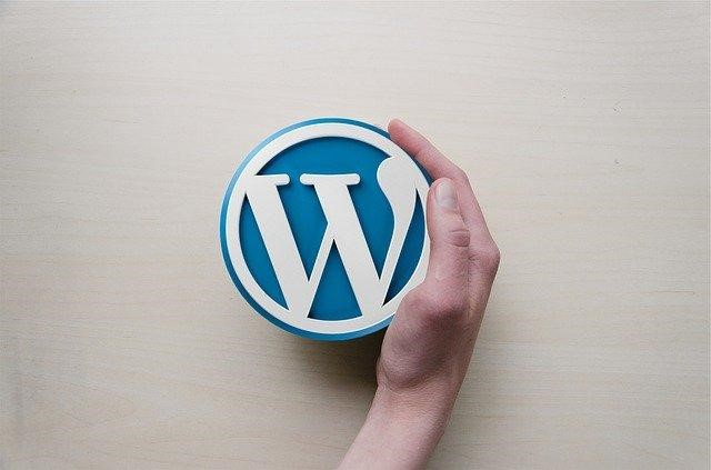 Reasons-for-installing-a-WP-plugin